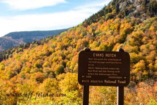 Evans Notch Route 113. High point from the Saco and Androscoggin rivers and the water from here feeds both rivers.