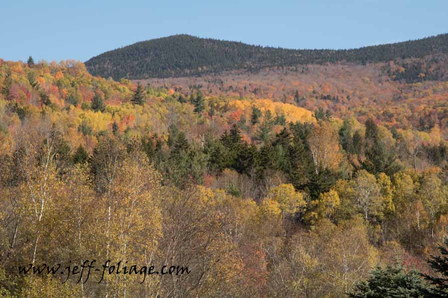 As we headed down Route 17 to Route 2 we went from really outstanding fall colors to bare trees, sometimes on the same set of hills