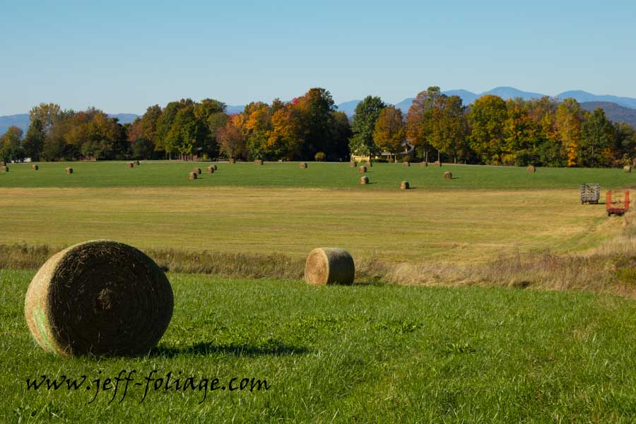 Vermont farm hay bales with the fall colors showing around the edges of the fields