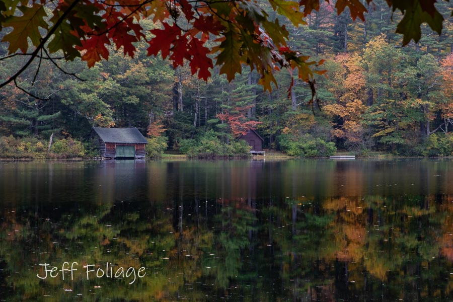 Small pond fall color in Tamworth NH