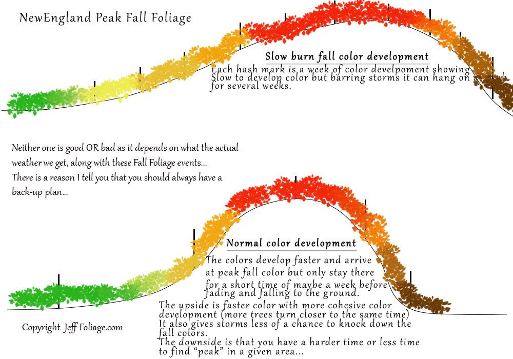 Peak Fall Foliage color development