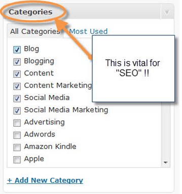 Categories are vital for SEO