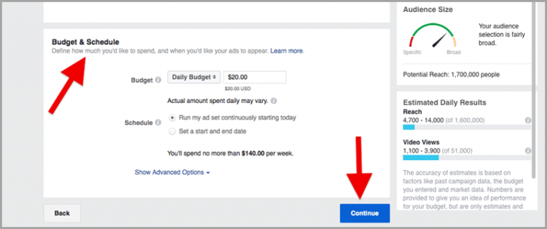 set your budget and launch your video ad campaign.