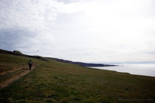 Hiking in Grimsey