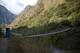 bridge-out-of-the-jungle_4999951855_o