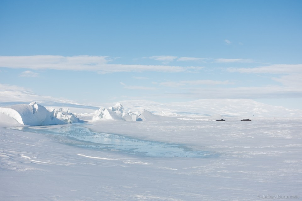 Melt Pools form in the low sections of the ridges. It's in these melt pools that Weddle Seals make holes from the Ross Sea onto the ice. Here you can see two seals hanging out on the ice.