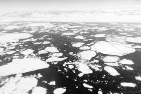 Another one of the many many forms of sea ice.