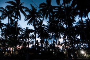 "The dramatic walk into our favourite bar in El Nido, ""La Plage"". The swaying palm trees at dusk are dramatic and beautiful."