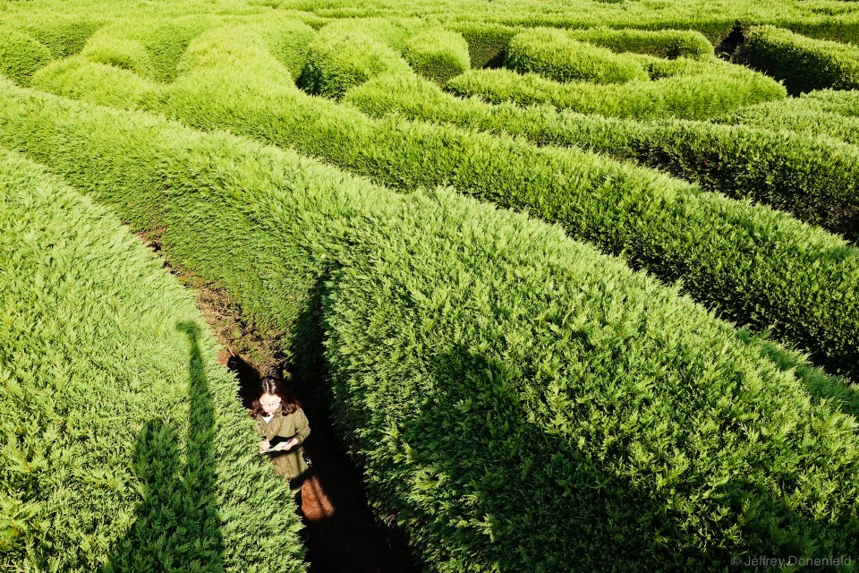 Lots of attractions on Jeju are ideally suited for couples, including the Gimnyeong Maze Park. A hedge maze!