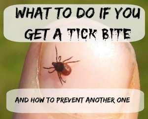 Preventing-Tick-Bites