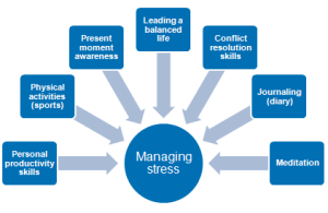 stress management plan components
