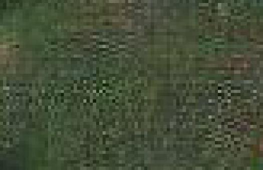 WeirdCompressionFromScan_04
