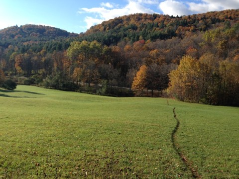 Photo of Vermont AT, east of Killington