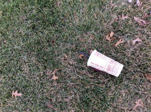 Photo of litter