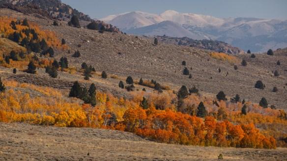 Eastern Sierra landscape photography