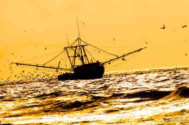 Shrimp Boat off of High Island in Texas
