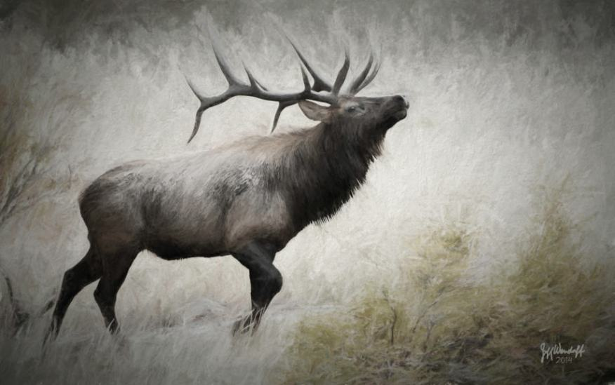A prancing elk digital art created by Jeff Wendorff with Topaz Impression