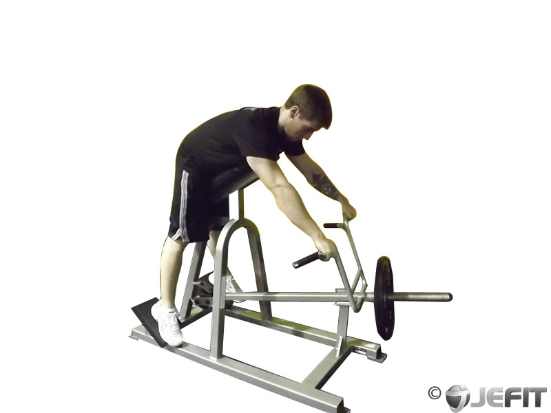 T Bar Lying Row Exercise Database Jefit Best Android