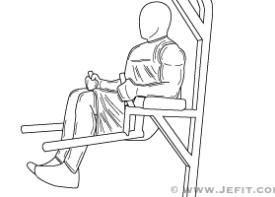 Knee Hip Raise On Parallel Bars