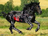cyber-whorse