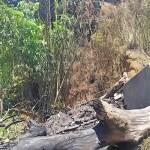 Bakar Sampah Tak Diawasi, Warga Panik Api Merembet ke TPU Gunung Setan