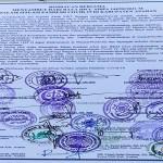 Jelang Idul Adha Forkopimda dan Tokoh Agama Keluarkan Himbauan Bersama