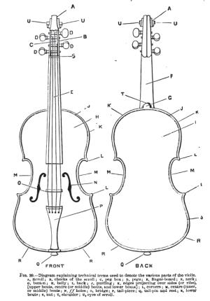 Mid Life Cello