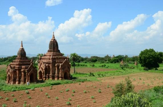 Temples au milieu des champs