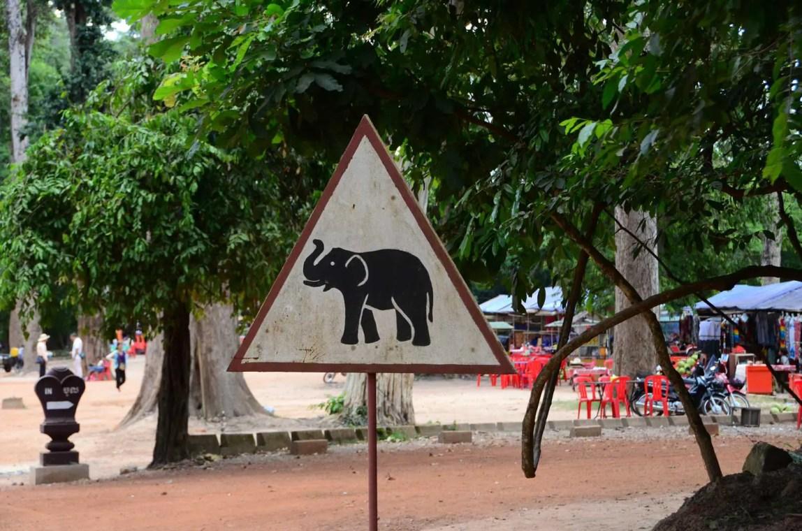 Elephant du Bayon