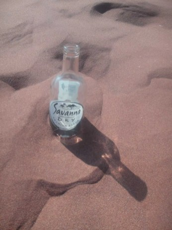 Savanna Dry dans les dunes à Sossusvlei, Namibie