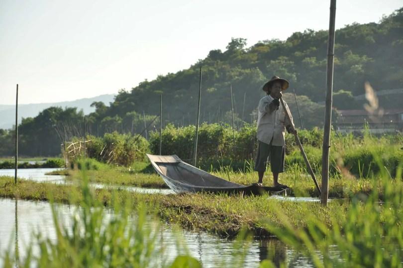 Birman sur sa pirogue