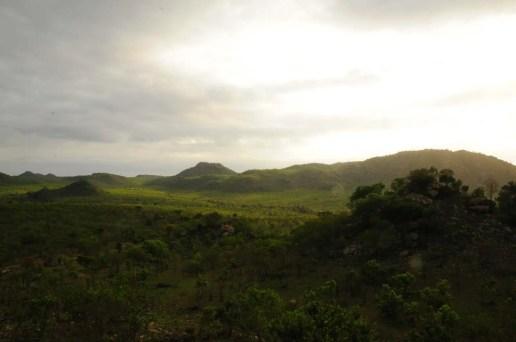 Vue sur la savane à la morning walk Kruger Park Afrique du Sud