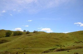 Collines à Taupo Nouvelle Zélande