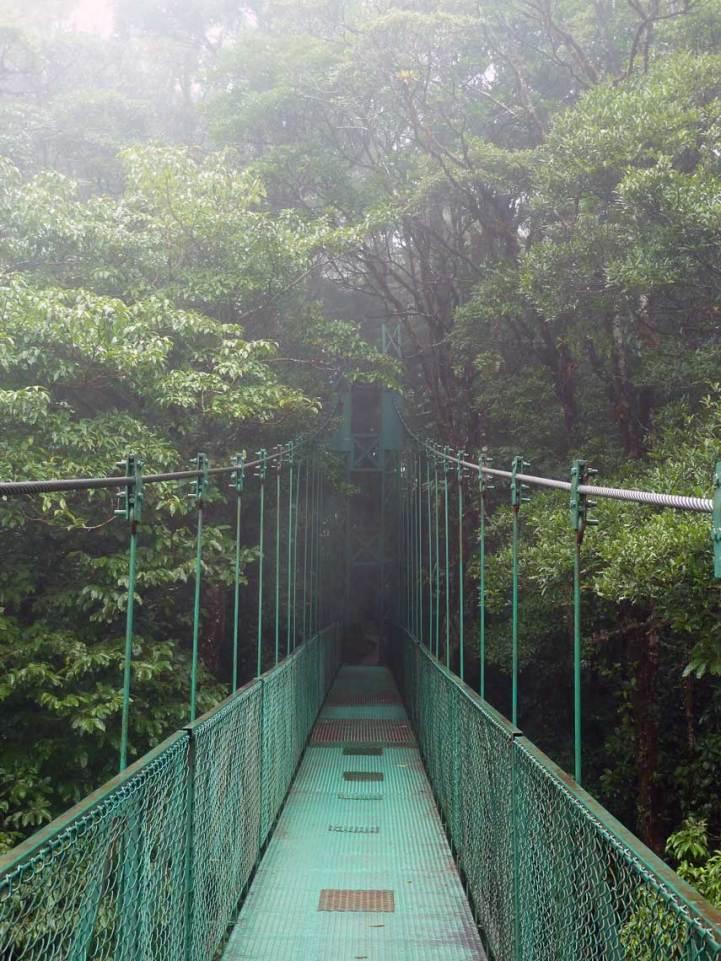 Passerelle sur la canopée, Monteverde, Costa Rica