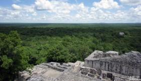 Vue de la canopée depuis un temple à Calakmul