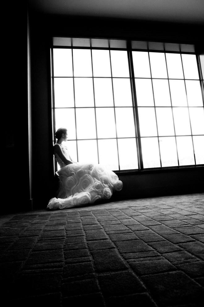 A quiet moment of stillness captured.