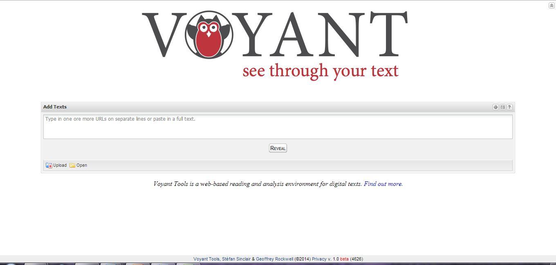 voyant tools