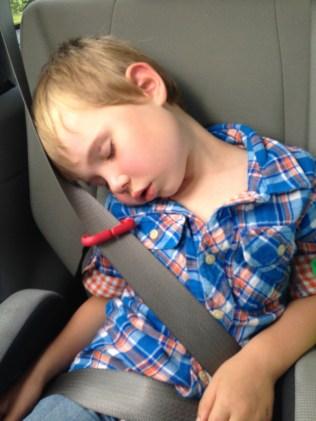 Asleep on the road
