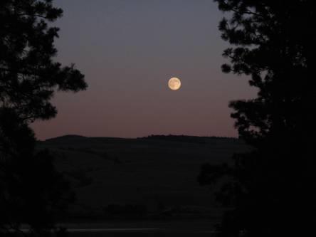 Moonrise - the super moon!