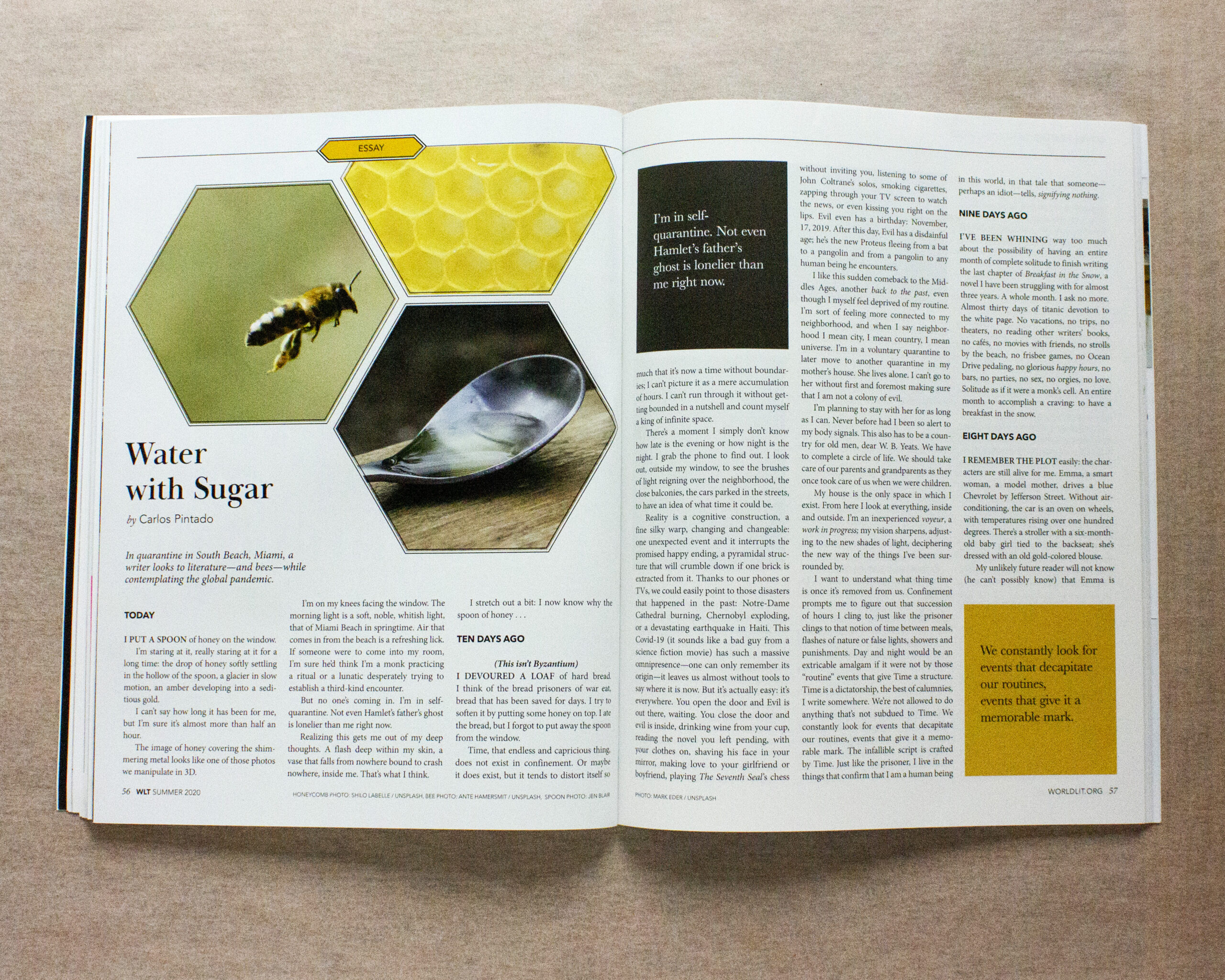 The honeycombs in the design reference the bees and feelings of fragmentation during the pandemic.