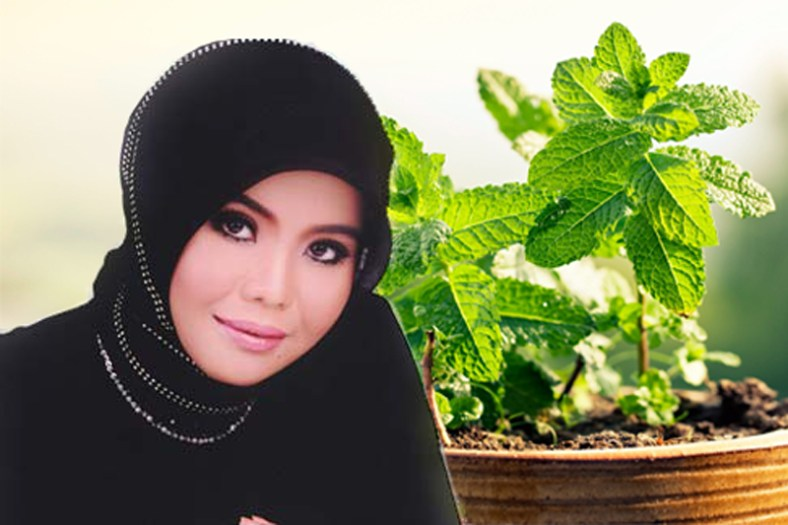 Komitmen Lestarikan Obat Tradisional Indonesia,  Jeng Ana Akan Luncurkan Produk Herbal
