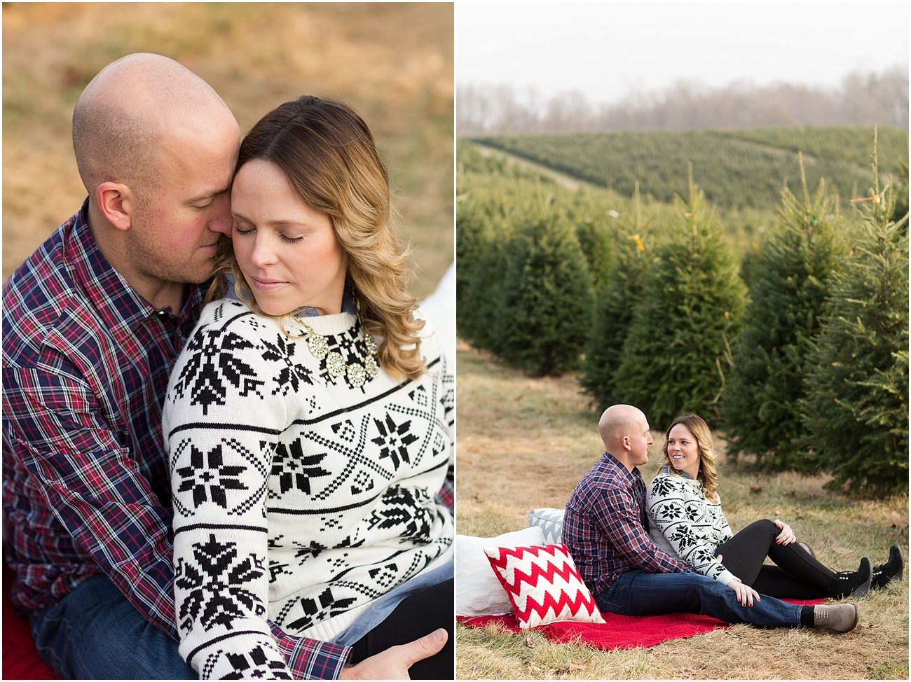 Pine_Valley_Farms_Engagement_Maryland_Wedding_Photographer_0006