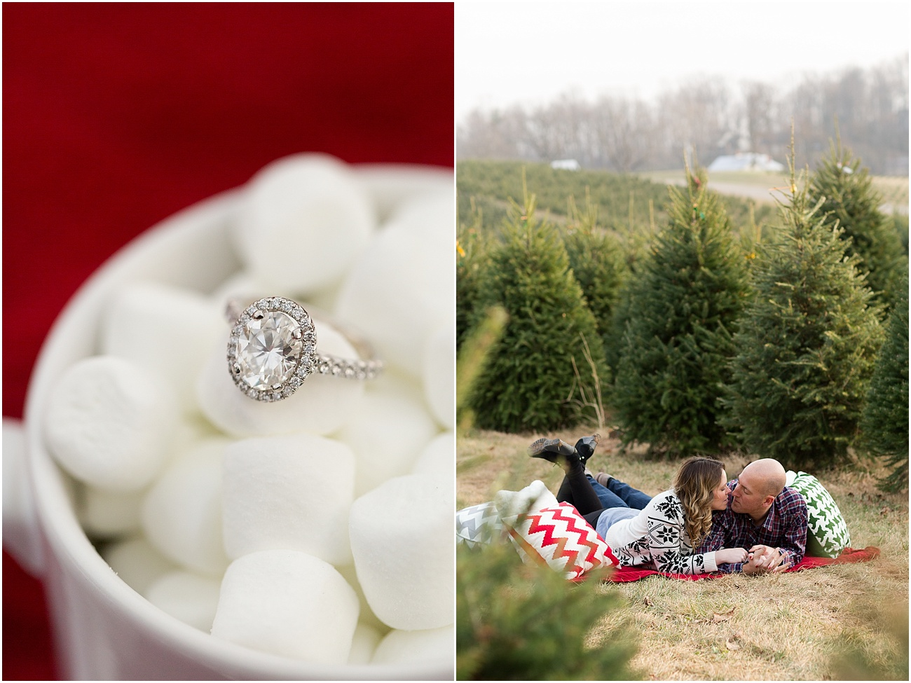 Pine_Valley_Farms_Engagement_Maryland_Wedding_Photographer_0010