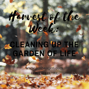 Harvest of the Week: Cleaning Up the Garden of Life