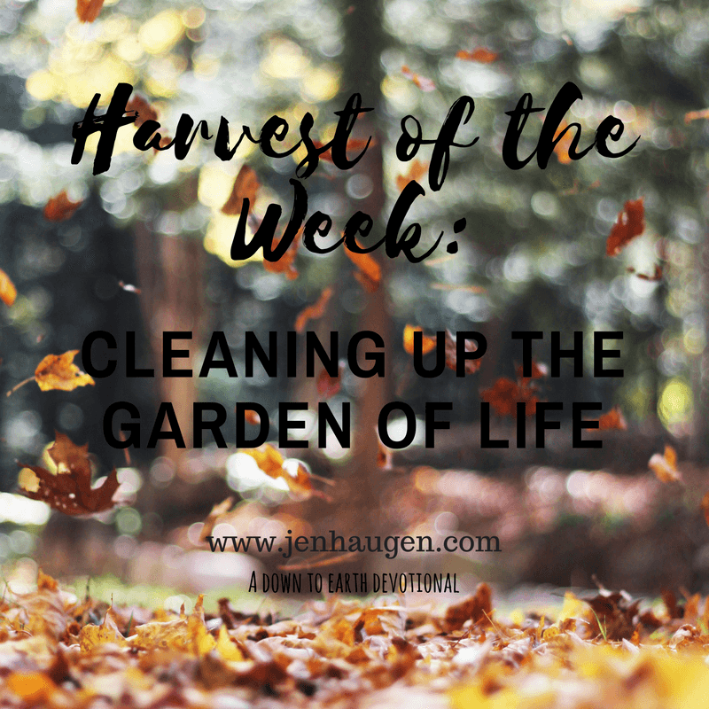 Cleaning UP the Garden of Life