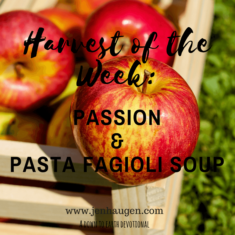 Passion and Pasta Fagioli Soup