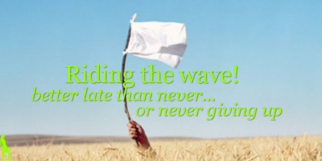Riding the wave with a white flag
