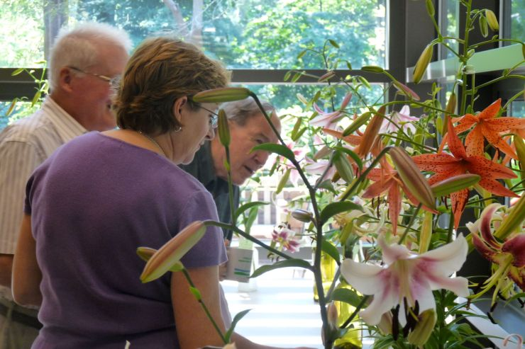 Three visitors examining cut lily flowers during a lily show in the John J. Willaman Education Center at Jenkins.