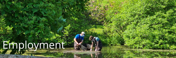 Two gardeners wading in a pond surrounded by bright green foliage. White text reads: Employment.