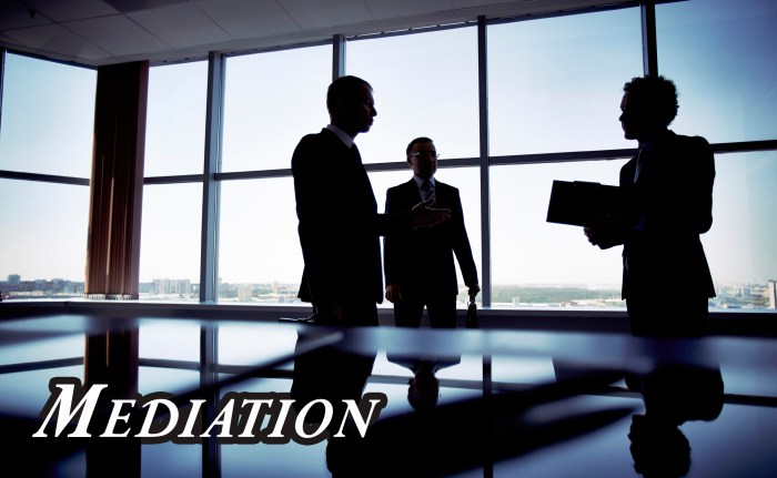Jenkinson Legal Attorney AnnMarie Mediation